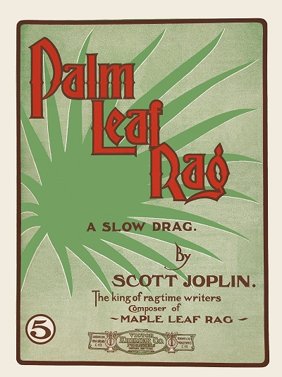 palm leaf rag cover