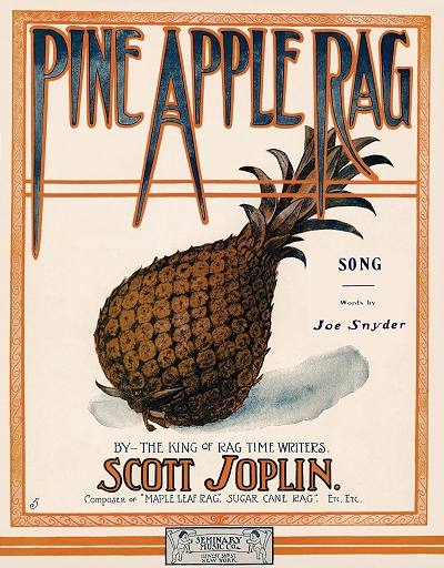 pine apple rag song cover