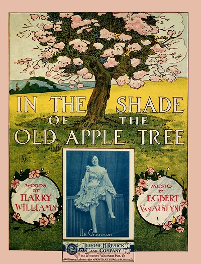 in the shade of the old apple tree cover